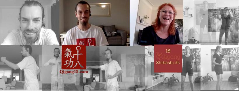 Shibashi Seminar 2018 – set 1 – Danmark