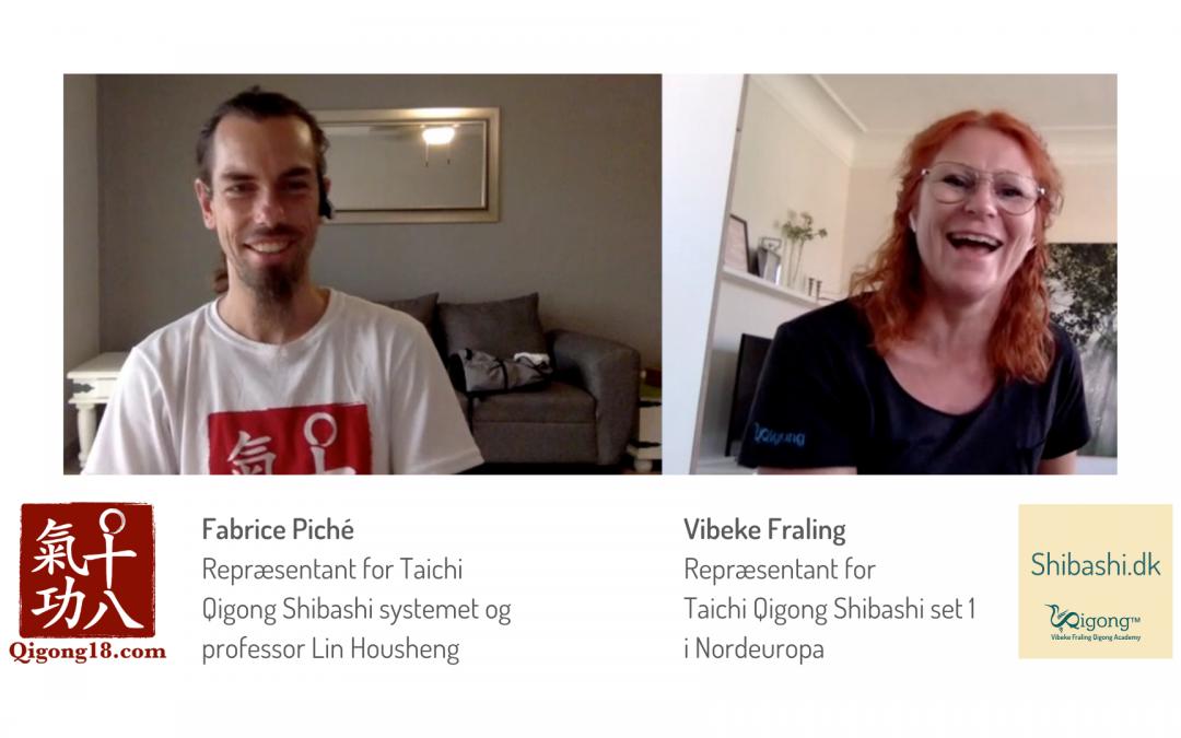 TaichiQigong Shibashi set 1 seminar med Fabrice Piché 2020